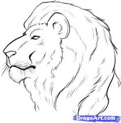 Easy Drawings Of Lions » Home Design 2017