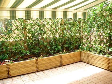 abbellire il terrazzo come abbellire un terrazzo con piante missionmeltdown