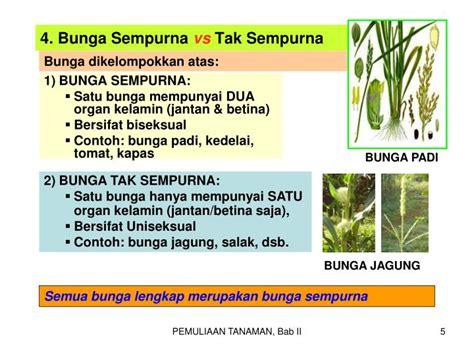bab ii perkembangbiakan tanaman hubungannya