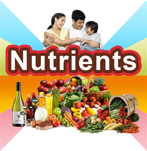 carbohydrates vitamins nutrients carbohydrates fats proteins vitamins healthylife