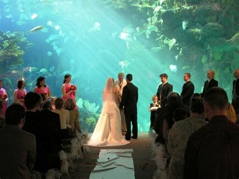 Cool Wedding Pics by Where Are You Getting Did You Get Married Weddingbee