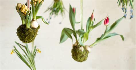 giardini sospesi  idee originali  arredare  il verde