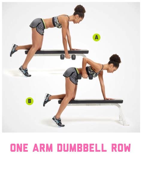 single arm dumbbell bench press 17 best ideas about one arm dumbbell row on pinterest
