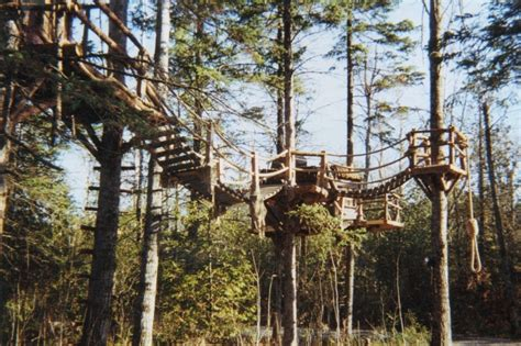 real life treehouse pin by rebecca ramsey on ewok village pinterest