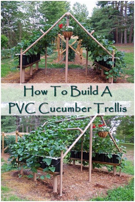 how to build a trellis how to build a pvc cucumber trellis the pvc cucumber