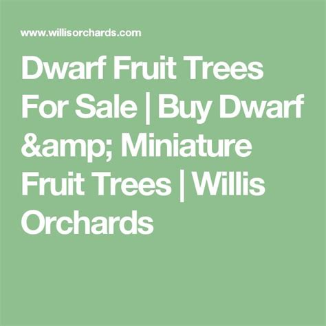 17 best ideas about fruit trees on - Miniature Fruit Trees For Sale