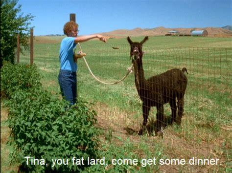 tina eat your food tina you fat lard come get some dinner tumblr