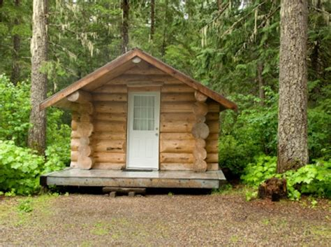 building a small cabin in the woods building your own tiny log cabin in the woods
