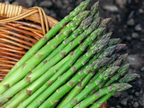 cooking tip of the day cooking fresh asparagus