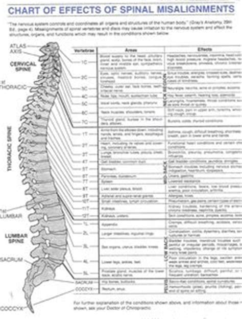spinal side effects c section brain nervous system herniated disc between s1 and l5