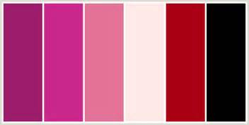 what color goes with light pink colorcombo235 with hex colors 9c1c6b ca278c e47297