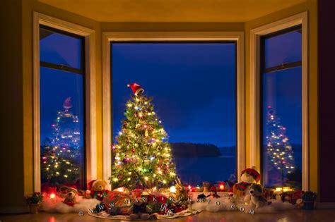 Dekorierte Fenster Weihnachten by Tree Display Photo Information
