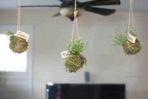 hanging indoor herb garden 28 hanging indoor herb garden indoor herb garden ideas pioneer settler transformed mason