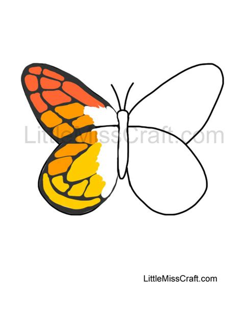 butterfly stages coloring pages free coloring pages of stages of butterfly