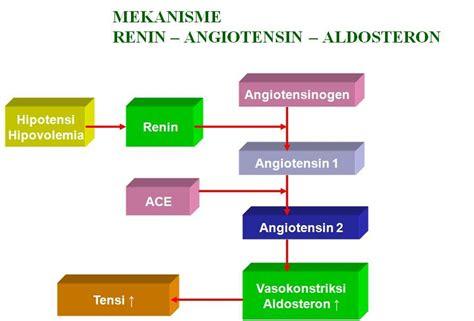Patofisiologi Penyakit perawat kabupaten manggarai timur alexandrio igule galung