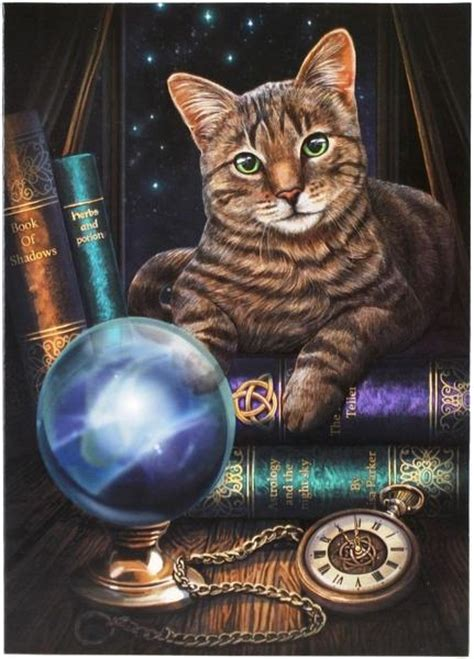 tabby cat greeting card lisa parker fortune telling kitty