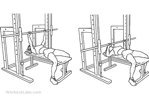 is a smith machine good for bench press smith machine chest press illustrated exercise guide