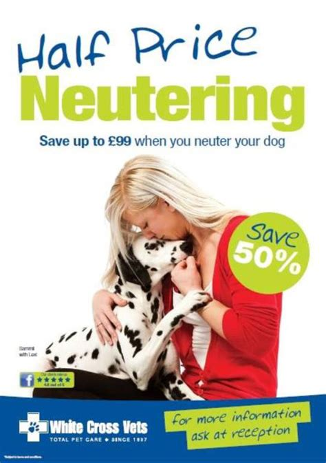 price to spay a should you neuter your white cross vets