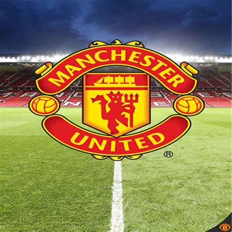manchester united wall murals manchester united mural your can the crest in their bedroom