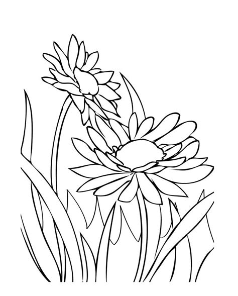 starburst coloring page starburst pages coloring pages