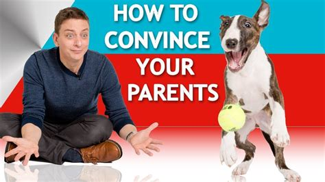 how to convince your parents to let you get a haircut 12 how to convince your parents to let you have a dog youtube