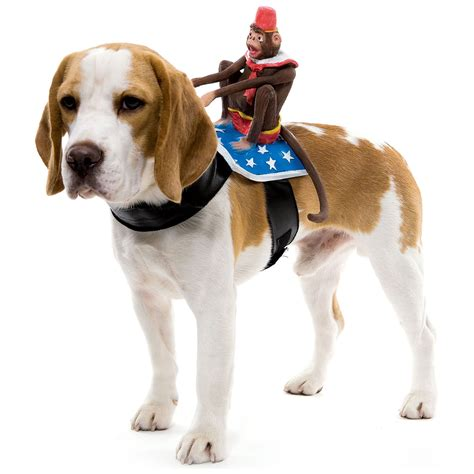 puppy costume for riders pet costumes the green