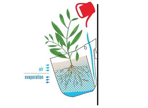 how to make a living wall garden living wall planter vertical home garden living wall