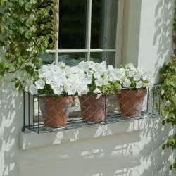Iron Window Box Planters by 25 Best Ideas About Wrought Iron Window Boxes On