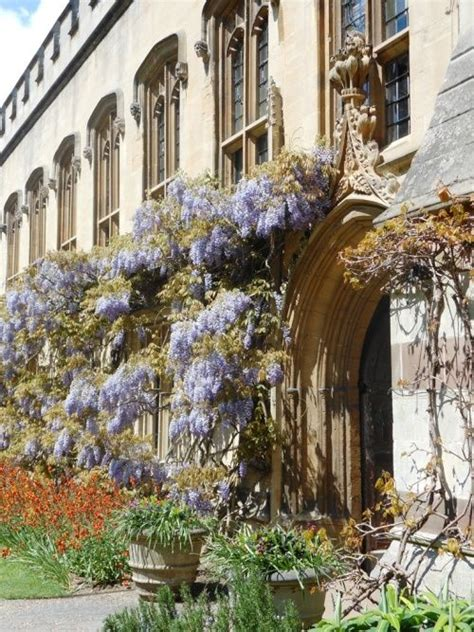 hton chapel exterior 5 bella donna chapel 93 best oxford in bloom images on pinterest oxfords