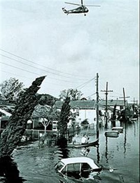 Does Discharge Appear Background Check Effects Of Hurricane In New Orleans The Wiki