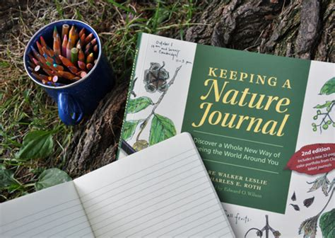 keeping a nature journal tell me a story a child s nature journal imagine childhood magic memories that last a