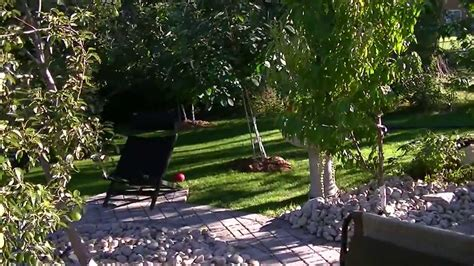 home landscape design youtube backyard orchard home victory garden vegetable garden and