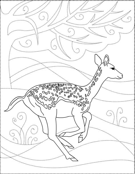 deer tracks coloring pages nicole s free coloring pages dear to me deer coloring