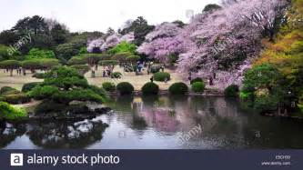image gallery shinjukugyoen