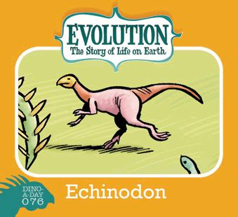 descargar story of life evolution welcome to the museum libro de texto big time attic dino a day 76 echinodon