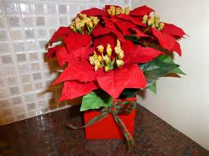 Artificial plants red poinsettia christmas plant in a pot indoor