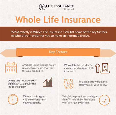 whole life policy life insurance types explained term life whole life