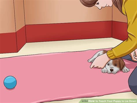 how to your to lie how to teach your puppy to lie 12 steps with pictures