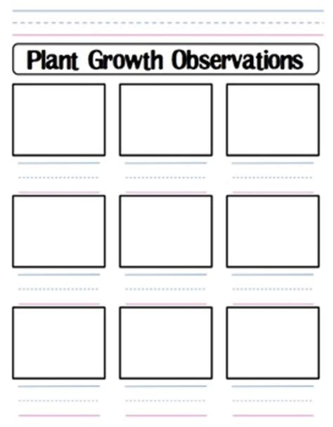 plant growth observation worksheet by shannon allison