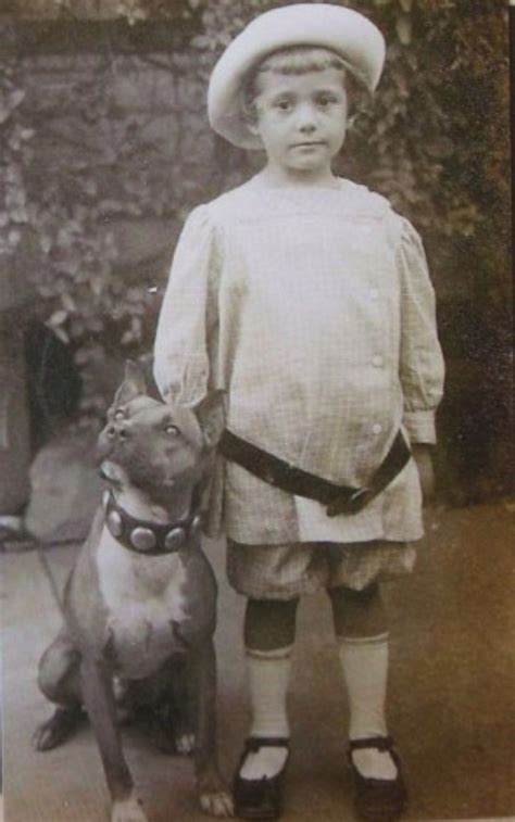 nanny dogs did you that pit bulls were known as the nanny the bully breeds