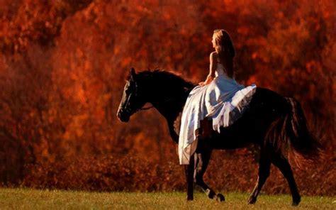 burro cojiendo pony mujer cogida por caballo pony mujer cojiendo con burro