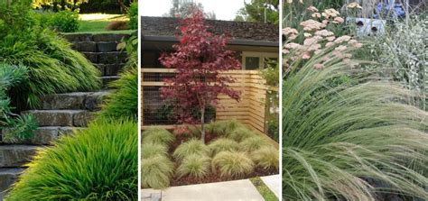 Landscaping Ideas Za Summer Garden Ideas Decorex Sa