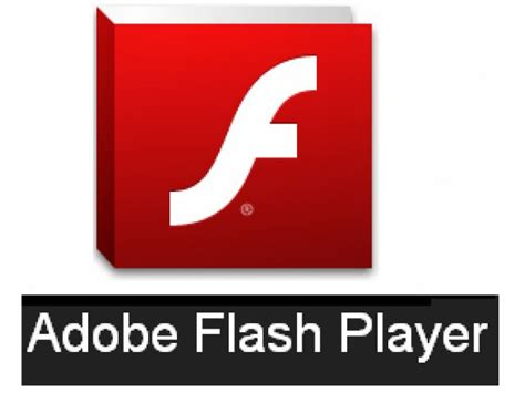 flash install new update adobe flash player 11 9 900 117 offline installer for browser best performace