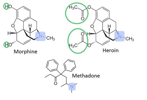 Will They Detox You Methodone And Herion by Detoxification From Methadone Rapid Detox Center