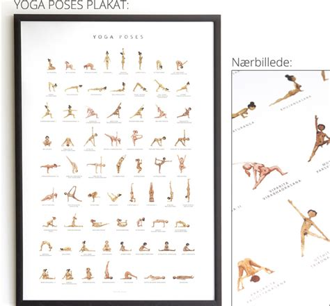 Ashtanga Yoga Plakat by Yoga Plakat Kost Og Ordentlig Ern 230 Ring
