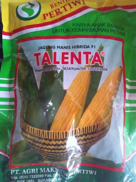 jual benih jagung manis f1 talenta harga murah bogor oleh