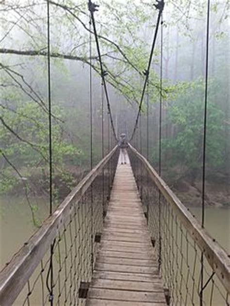swinging bridge resort things to do red river gorge tourism