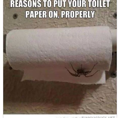 Toilet Paper Meme - the 25 best toilet paper meme ideas on pinterest toilet paper funny drawings and funny