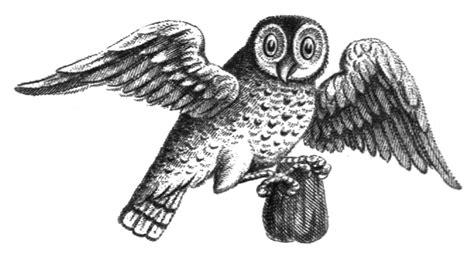 vintage illustration vintage owls illustrations
