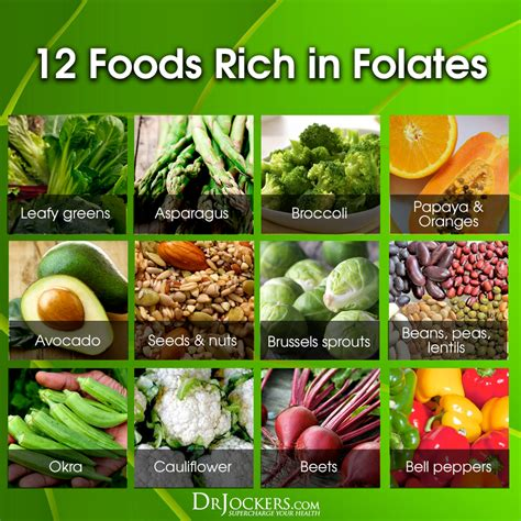 best sources of folic acid the 14 best folate rich foods drjockers